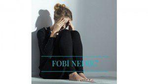 fobi linkedin 300x171 - fobi_linkedin